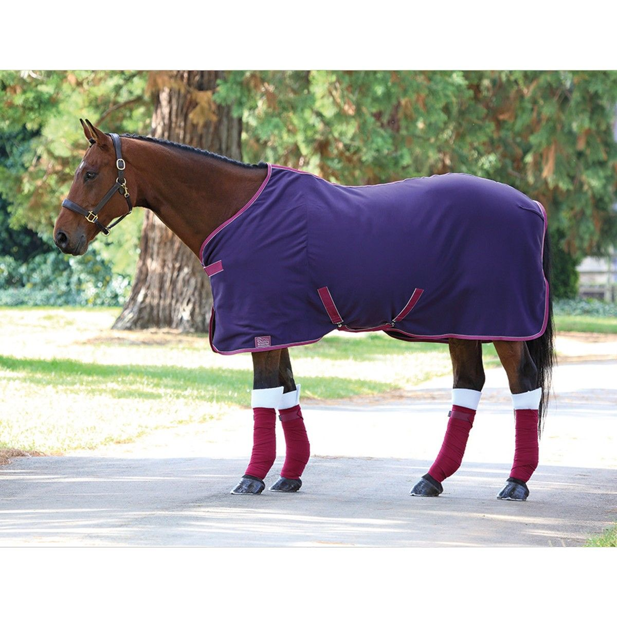Purple Thermatex Rug: Shires Original Pony Jersey Cooler